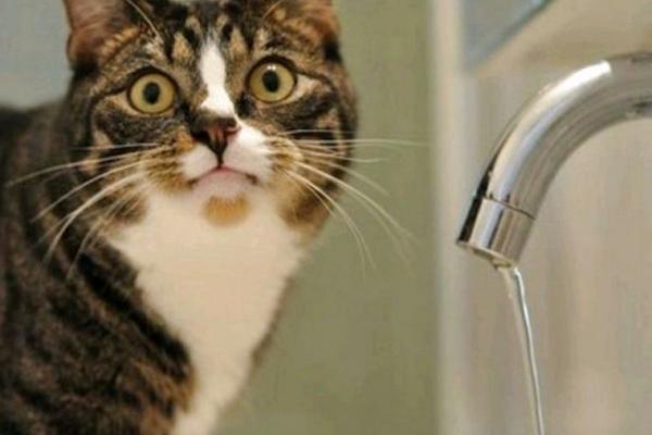 Прорив водогону: Чернівці на два дні залишилися без водопостачання