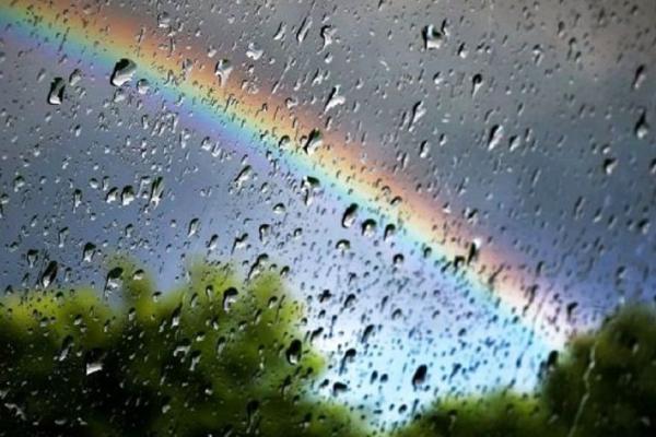 Якою буде погода у Чернівцях та області 15 квітня