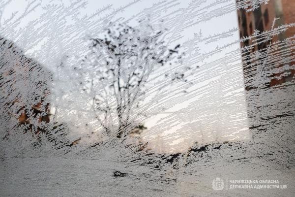 На Буковині прогнозують сильні заморозки (другий рівень небезпеки)