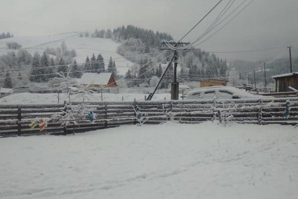 На Буковині сьогодні випало чимало снігу (ФОТО)